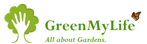 GreenMyLife – Anyone can Garden