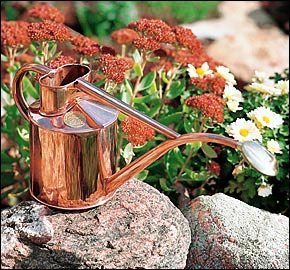 Haws watering can with long bent snout