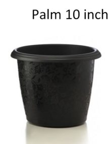 Plastic Planter Palm 10 inch pack of 5 pots,plastic, planter, palm, home, house, office, balcony, apartments, corridor