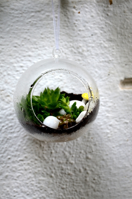 Hanging orb terrarium medium only for bangalore delivery for Gardening tools in bangalore
